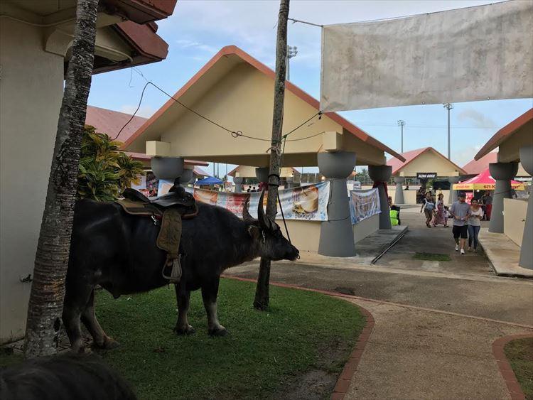 グアムのチャモロビレッジで行われるナイトマーケット